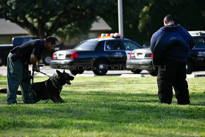 K9 Training El Monte Park-19