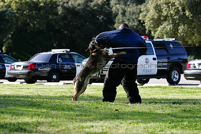 K9 Training El Monte Park-98