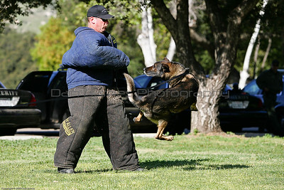 K9 Training El Monte Park-101