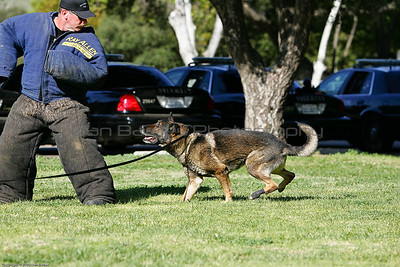 K9 Training El Monte Park-102
