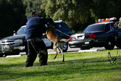K9 Training El Monte Park-77