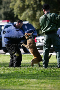 K9 Training El Monte Park-59