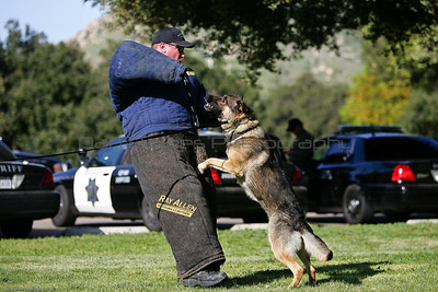 K9 Training El Monte Park-34
