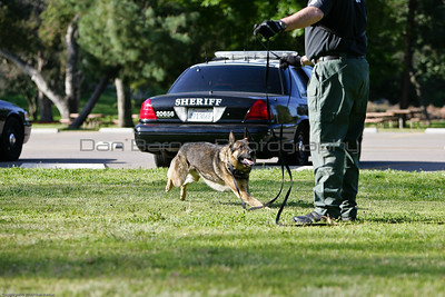 K9 Training El Monte Park-40