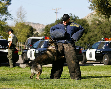 K9 Training El Monte Park-13