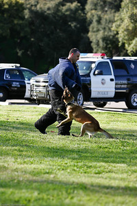 K9 Training El Monte Park-71