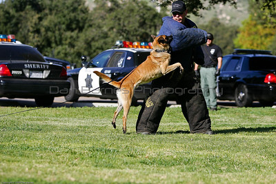 K9 Training El Monte Park-80