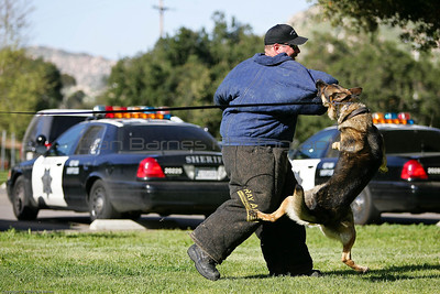 K9 Training El Monte Park-32
