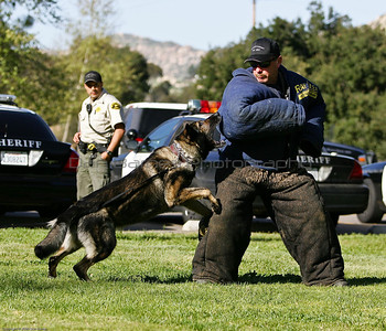 K9 Training El Monte Park-9
