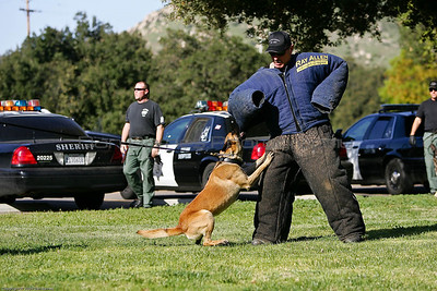 K9 Training El Monte Park-67