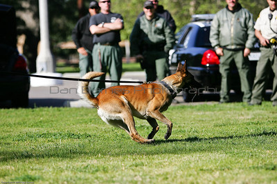 K9 Training El Monte Park-75