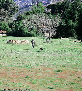 K9 tracking training in Ramona-31