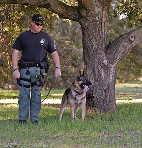K9 tracking training in Ramona-29