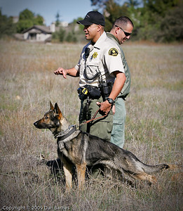 K9 training Wright's field-4