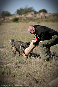 K9 training Wright's field-219