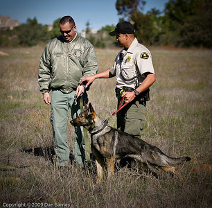 K9 training Wright's field-1
