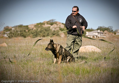 K9 training Wright's field-211