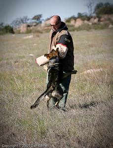 K9 training Wright's field-10