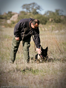 K9 training Wright's field-229