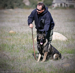 K9 training Wright's field-188