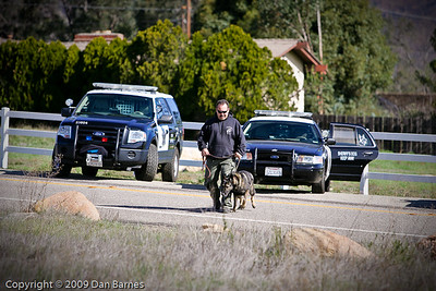 K9 training Wright's field-183