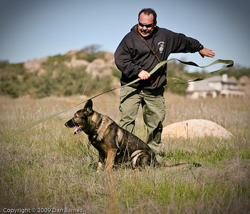 K9 training Wright's field-210