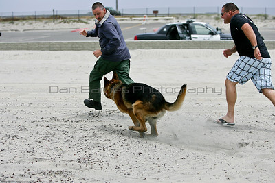 K9 water training 1-30