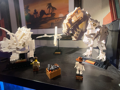 LEGO IDEAS 21320 Dinosaur Bones Builds 4