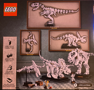 LEGO IDEAS 21320 Museum Dinosaurs-back