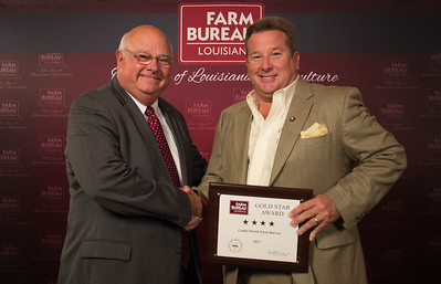 Caddo Farm Bureau Parish member Marty Wooldridge accepts the Four Gold Star Award from Louisiana Farm Bureau President Ronnie Anderson.