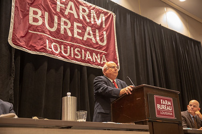 Louisiana Farm Bureau Federation President Ronnie Anderson speaking at the 2019 Voting Delegate Session.