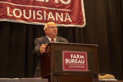 Louisiana Farm Bureau Federation President Ronnie Anderson speaking at the 2019 Voting Delegate Session