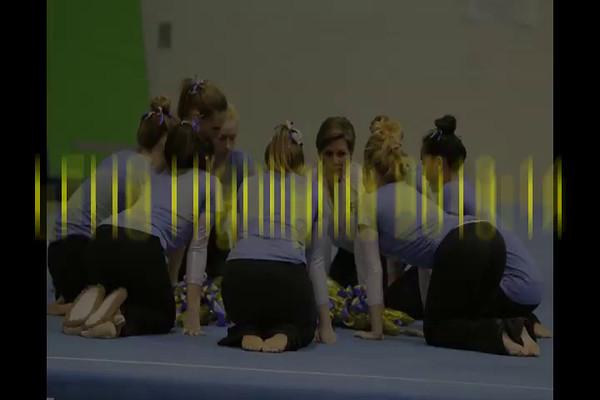 LFHS Gym 2013-14 1