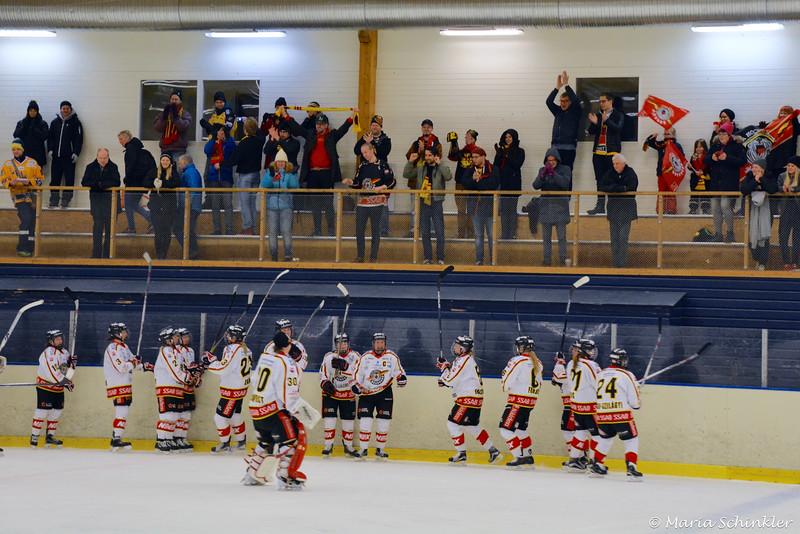 LuleåFans & Luleå hockey / MSSK