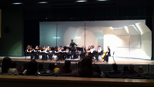 LHMS Orchestra Assessment 2013