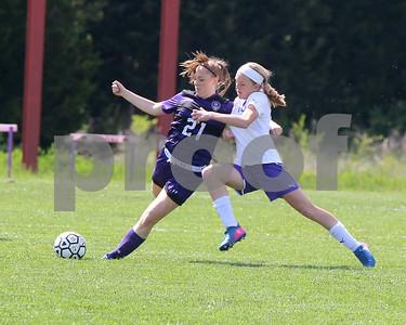 LHS Girls Soccer at Baldwin