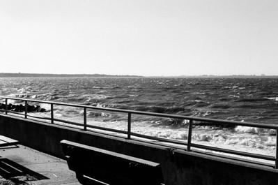 Holocaust Memorial Grounds - Glen Cove, NY Lens: Nikkor 50mm f/1.8 Film: Kodak TRI-X iso400