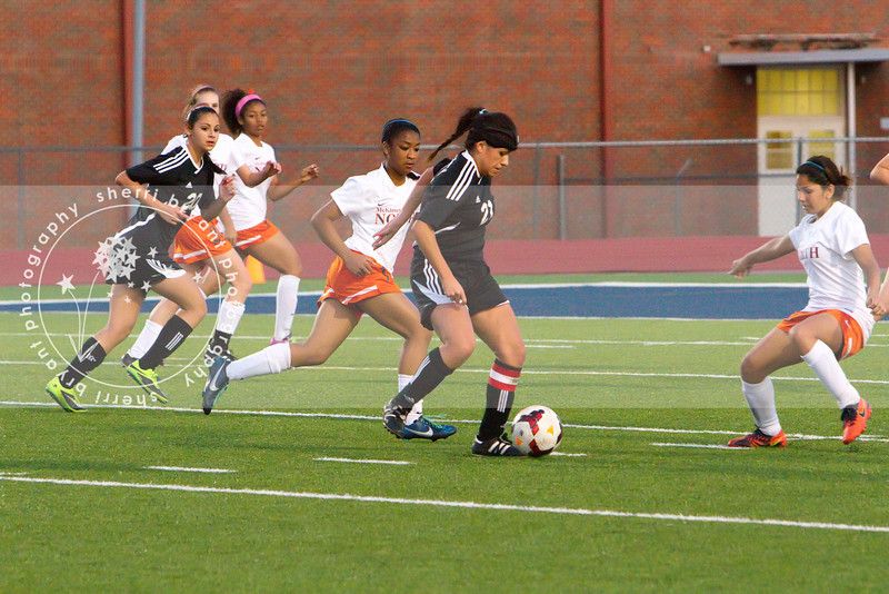 LHS GIRLS SOCCER PLAYOFF-292 copy