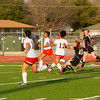 LHS GIRLS SOCCER PLAYOFF-132 copy