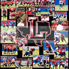 LHS-CHS FIELDHOUSE COLLAGE 2012