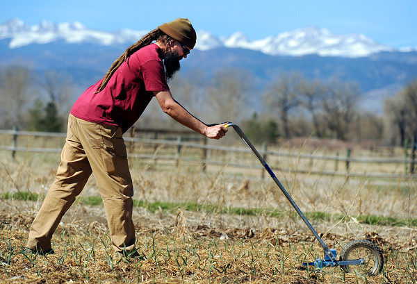 "RAS Farms owner Adam Loovis turns the soil while working on his crops on Friday, March 23, at 9911 Isabelle Rd. in Lafayette. For more photos of Loovis working go to  <a href=""http://www.dailycamera.com"">http://www.dailycamera.com</a><br />  Jeremy Papasso/ Camera"