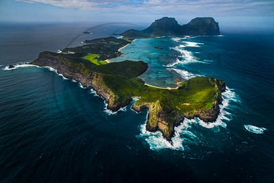 Lord Howe Birds View