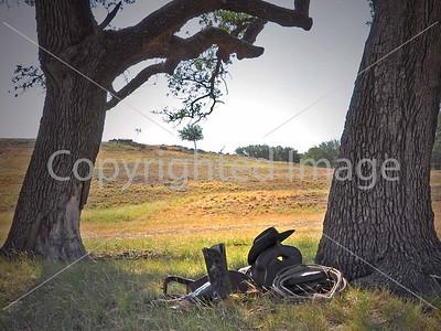 B006  COWBOY AT PEACE