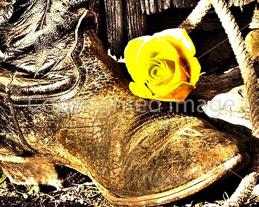 B005 EVEN UGHLY BOOTS LIKE YELLOW ROSES