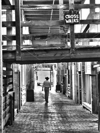 Fort Worth Stockyards Memorie