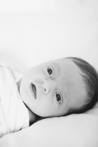 Leila Meyer Newborn-0004