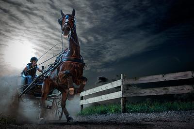 1HP | Slabroekse Paardendagen