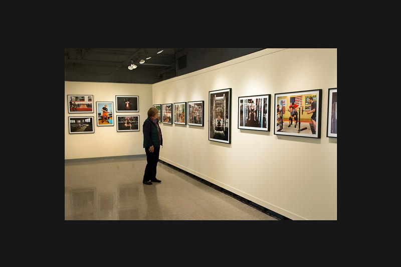 Exhibit at the Augusta Savage Gallery, Amherst, MA<br /> November 2014 <br /> Photo (c) Liane Brandon