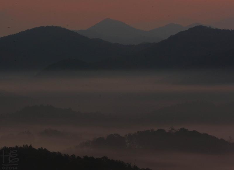 Pre-sunrise fog