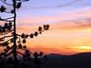 SIERRA SUNSET NO. 2
